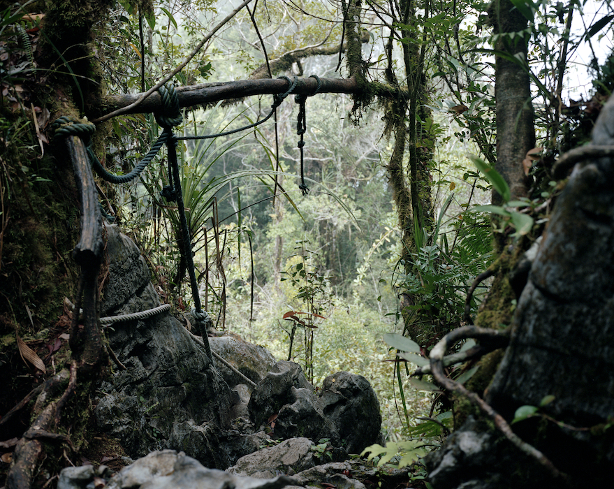 The Pinnacles, Gunung Mulu National Park, Sarawak